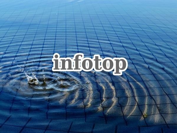 infotop08
