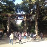 臼山直樹さん達と、明治神宮に、年頭祈願に行ってきました。