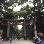 臼山直樹さん達と、今年も、明治神宮に年頭祈願に行ってきました。