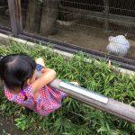 よこはま動物園「ズーラシア」に、行ってきました!