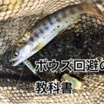 【初心者〜中級者必見】渓流ルアー釣りで、ボウズを回避する為の教科書