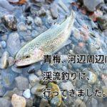 【2020年 奥多摩】青梅、河辺周辺に、渓流ルアー釣りに、行ってきました。